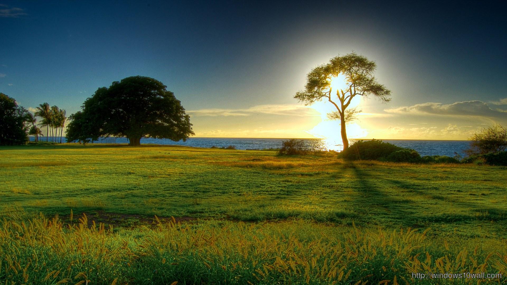 Beautiful Nature Hd Wallpaper Free Download