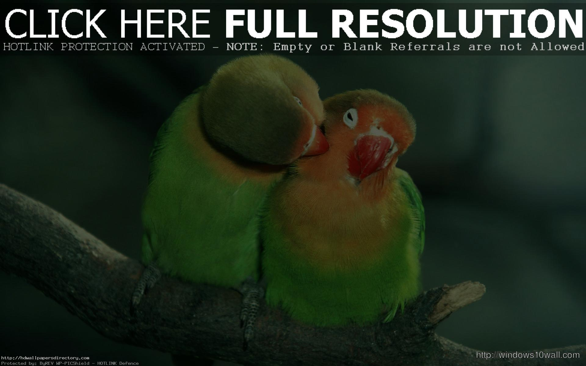 HD Wallpapers of love couples free download