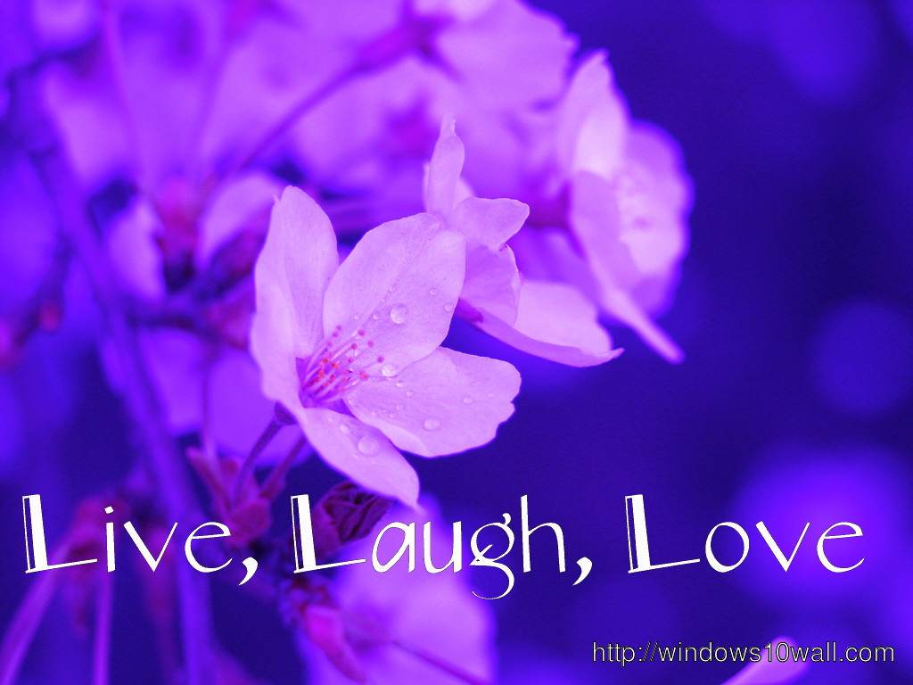 Free Live Laugh Love Wallpaper Download