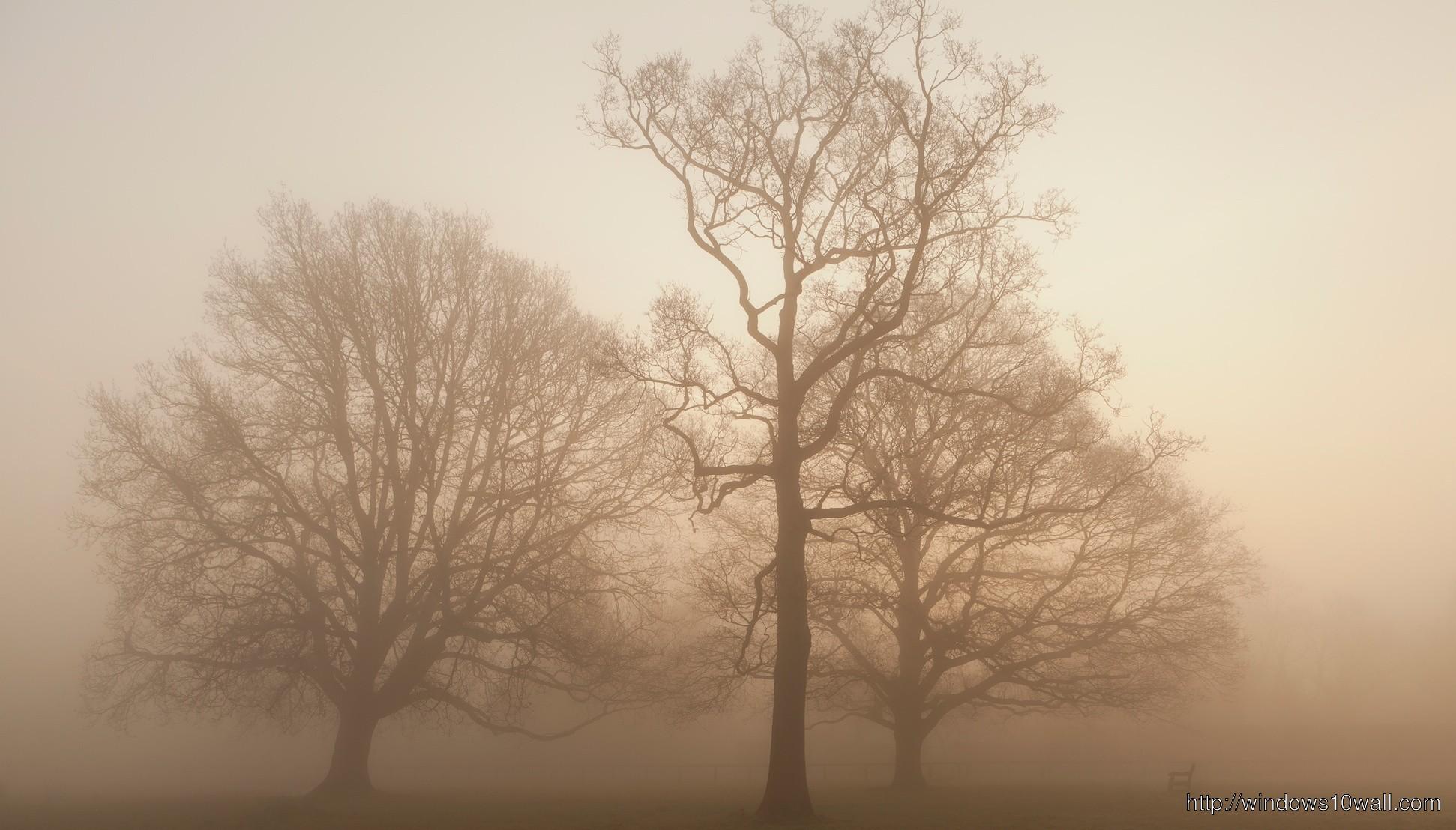 Earth Fog Wallpaper for desktop Background