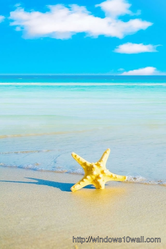 Star Fish Beach iPhone HD Background Wallpaper