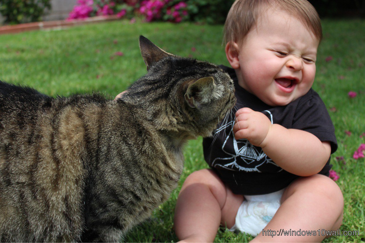 Cute Baby Playing with Cat Wallpaper