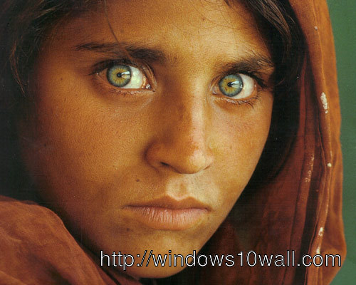 World Famous Afghan Girl Wallpaper