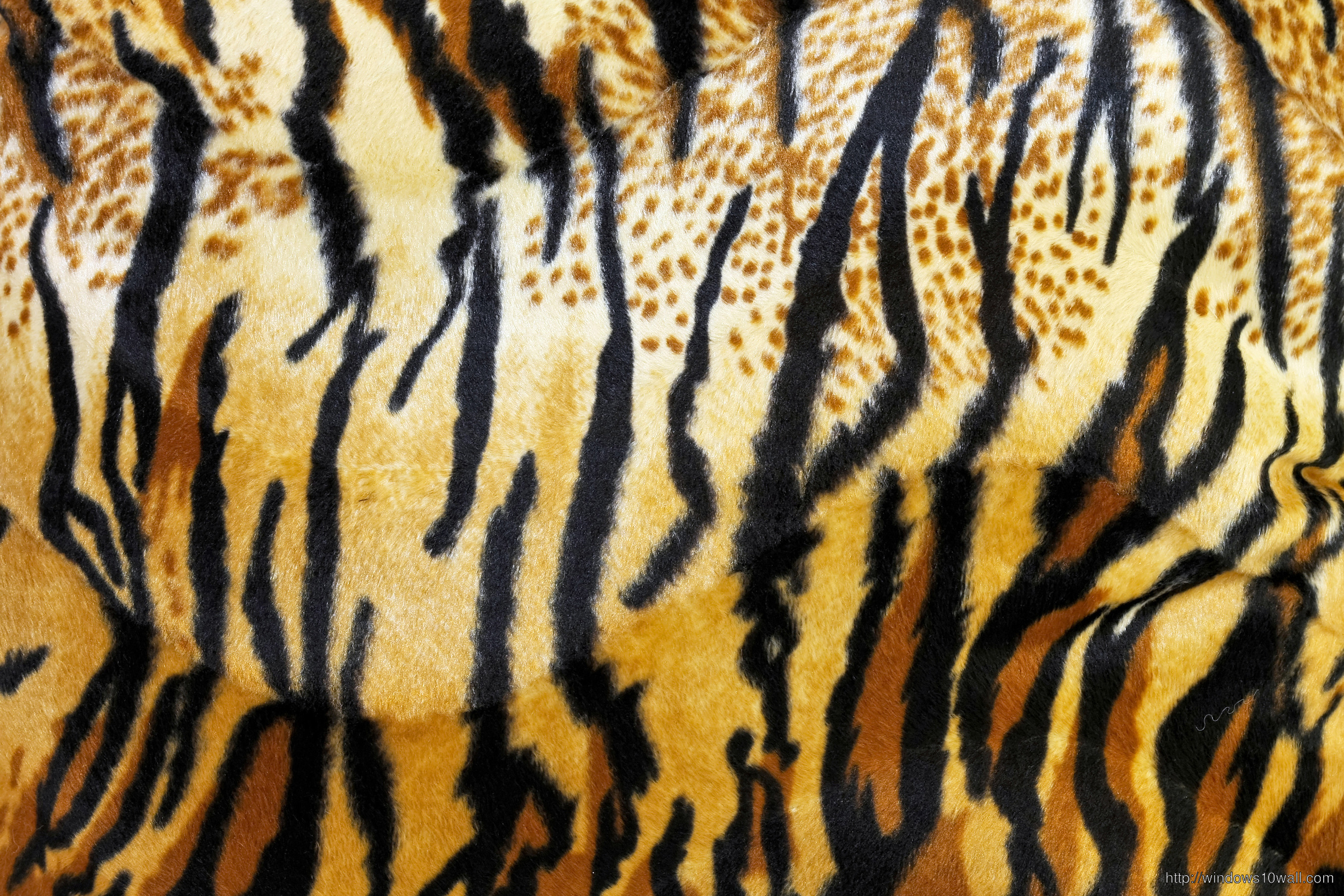 Animal Print Tiger Wallpaper Free Download