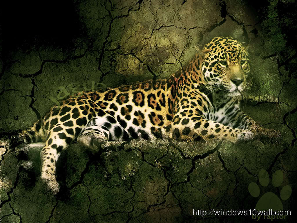 Jaguar Picture