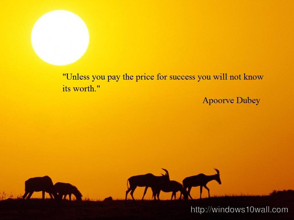 Success Quotes Wallpaper that Make Sense