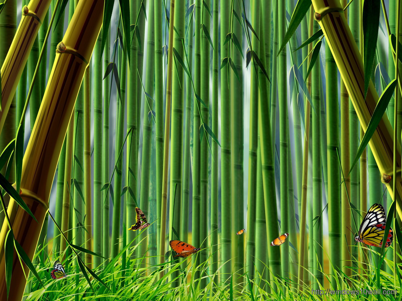 Natural Green Bamboo Background Wallpaper