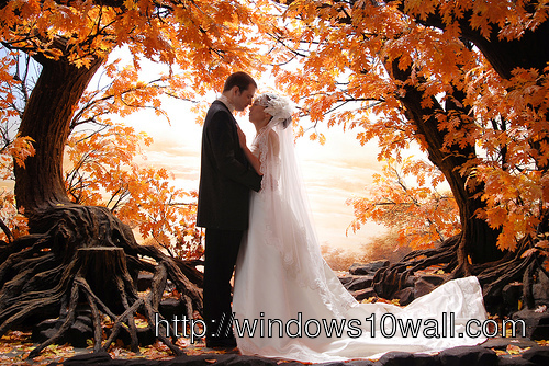 Fall Wedding Photo Ideas Background Wallpaper