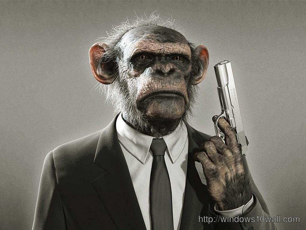 Funny Monkey Picture with Gun Wallpaper
