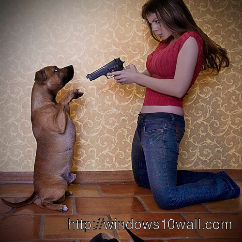 Funny Dog and Girl with Gun Make You Laugh Out Loud Wallpaper