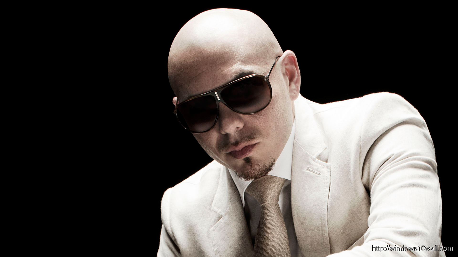 Pitbull Stylish Wallpaper