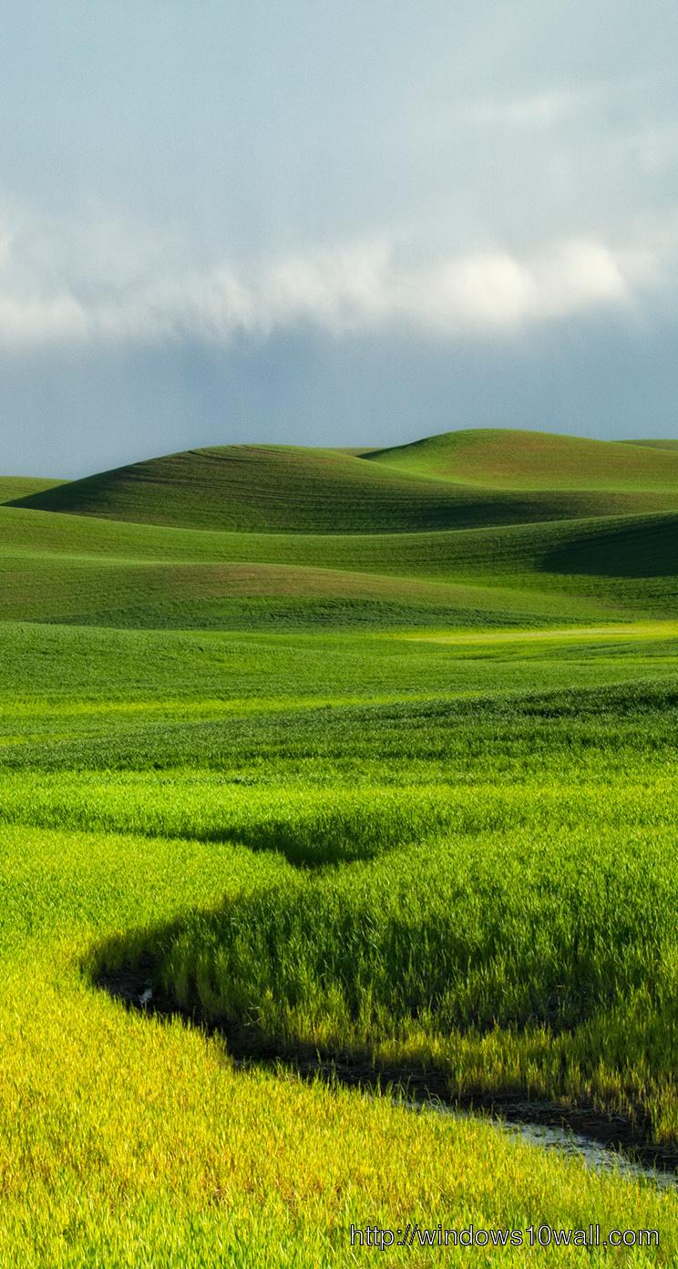 Green land iphone 5 Background Wallpaper