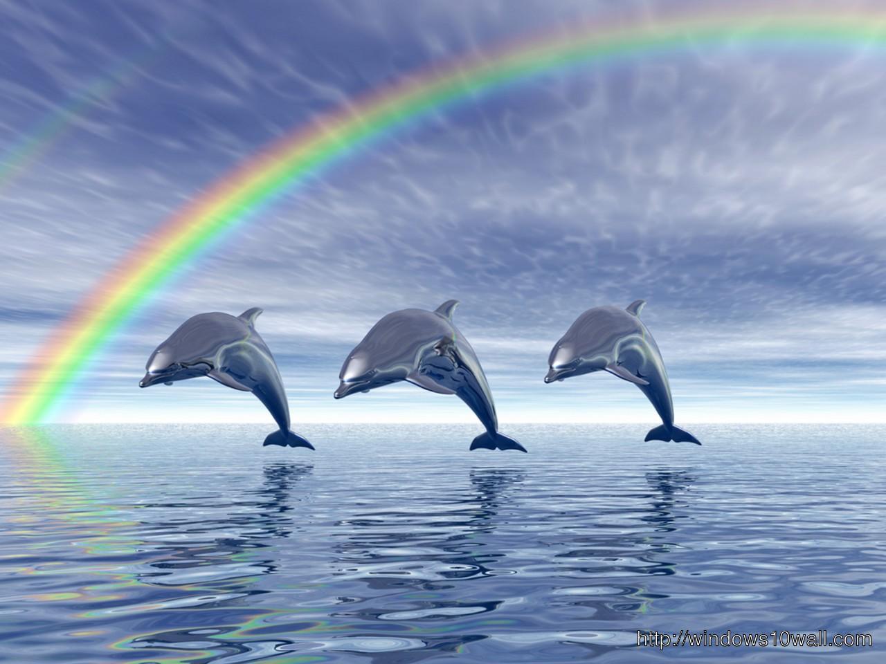 windows 1 0 wallpaper dolphin - photo #39