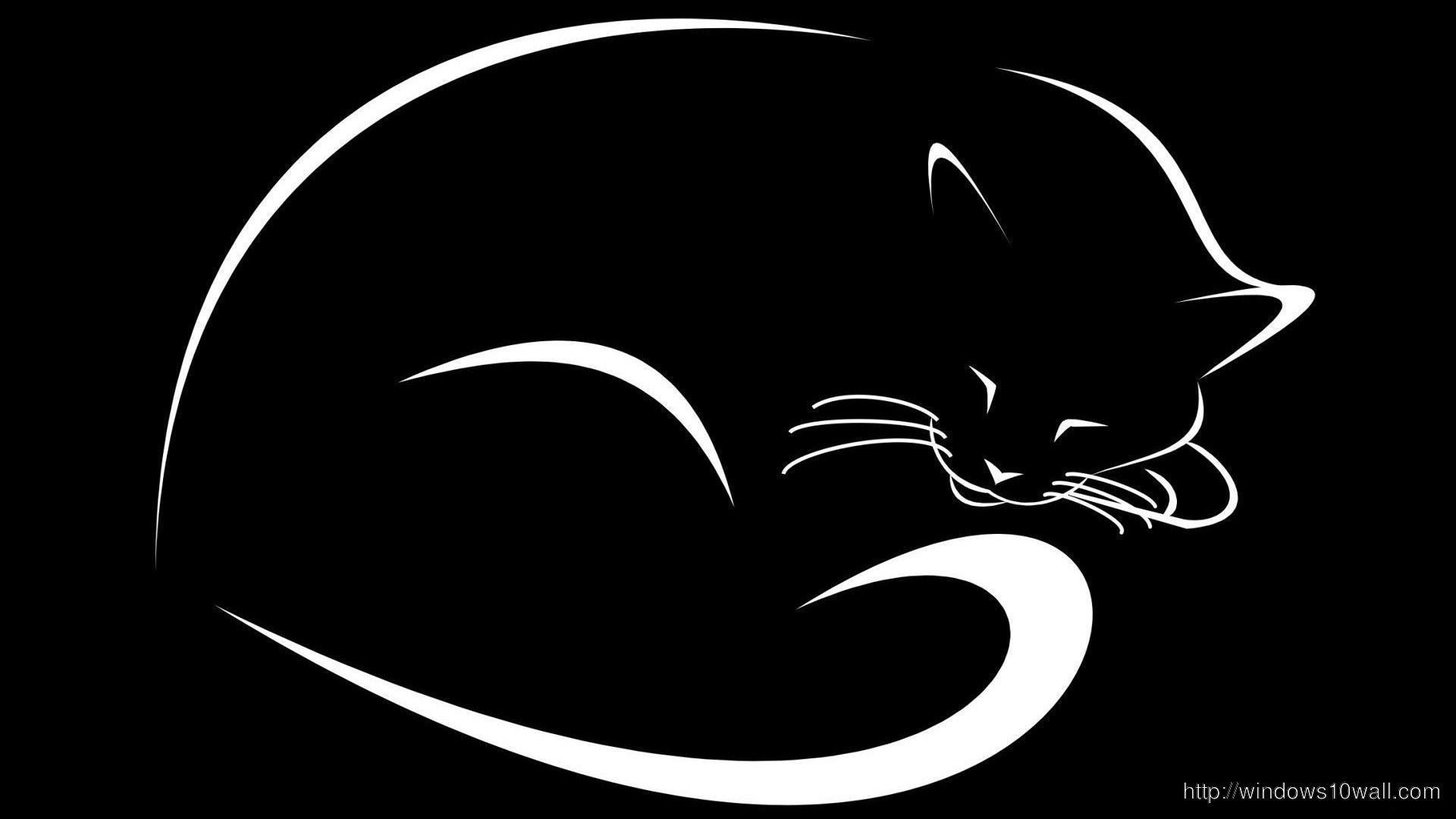 Black white abstract cat hd wallpaper windows 10 wallpapers - Black and white hd wallpapers black background ...