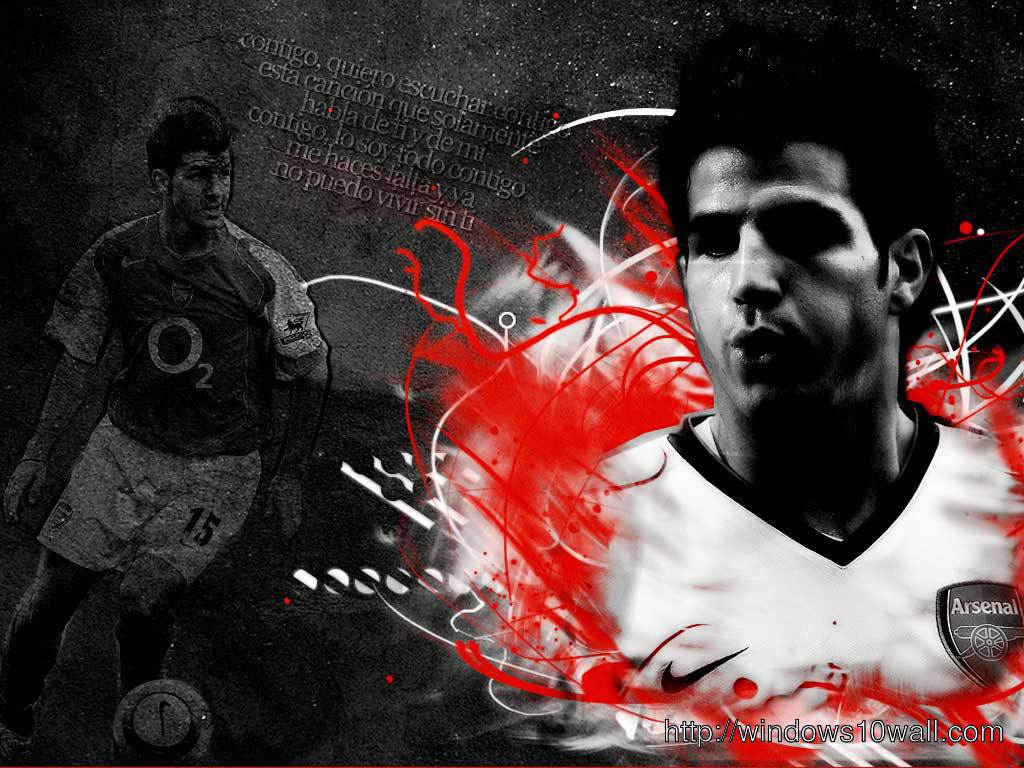 Cesc Fabregas world cup 2014 wallpaper