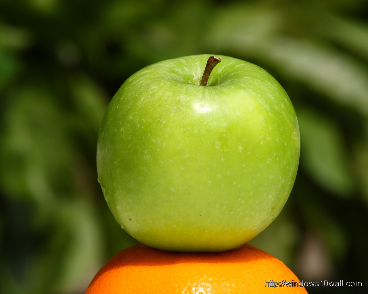 color apple green perfect hd mobile hd wallpaper - Apple Green Color