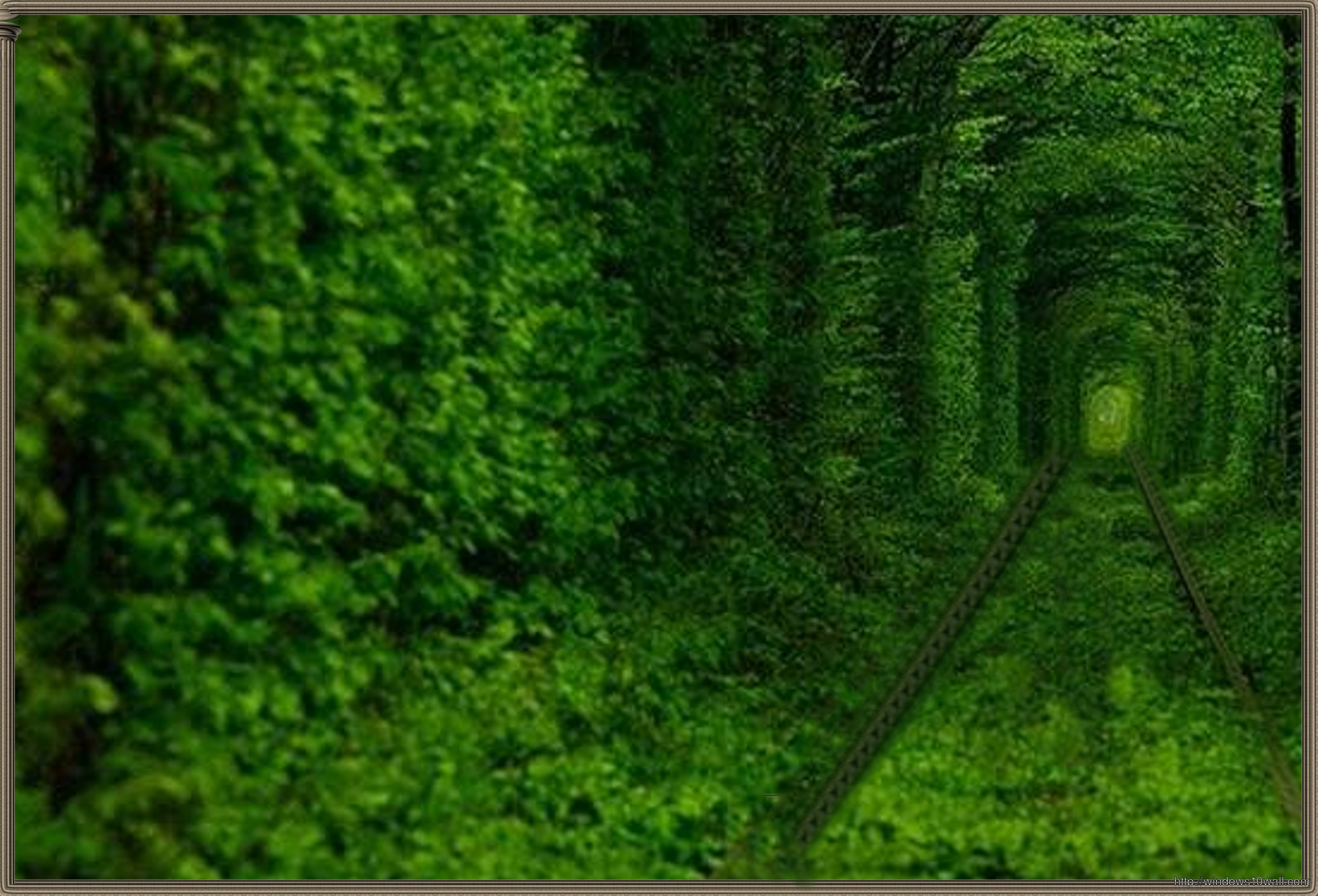 Tunnel Of Love HD Mania Wallpaper