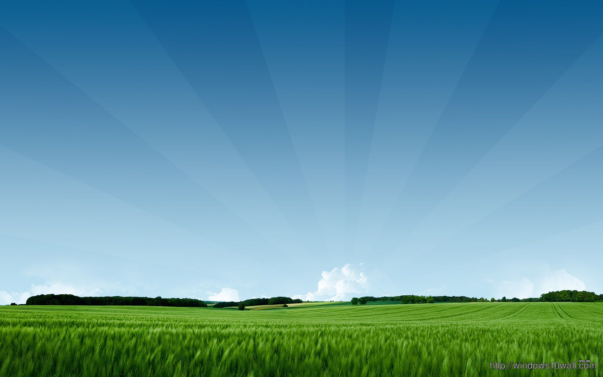 Summer-Green-Nature