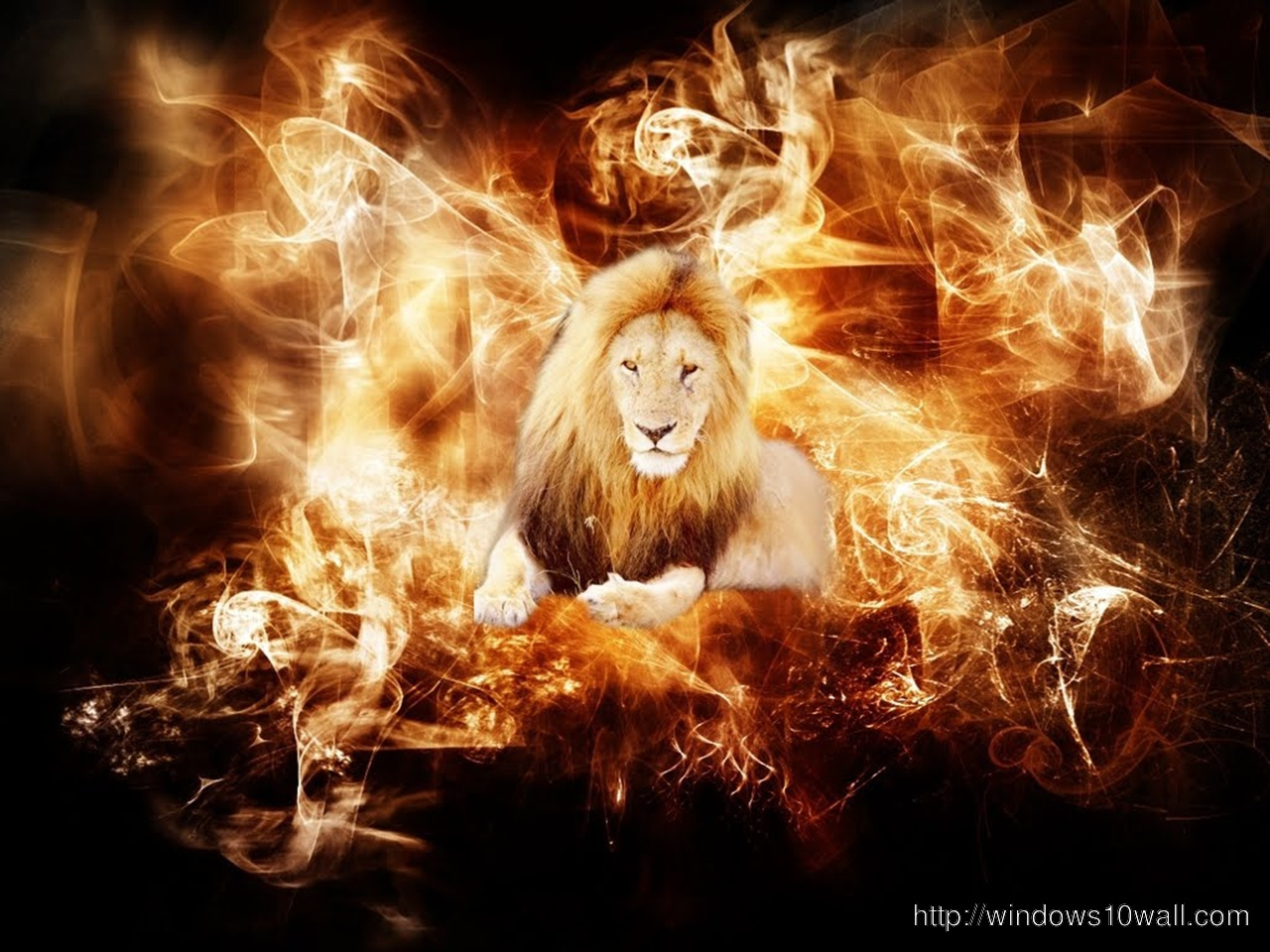abstract-Background-Wallpaper-lion