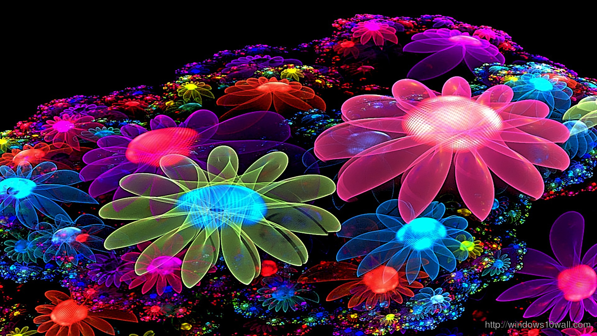 Animated Cool Colorful Flowers Desktop Wallpaper