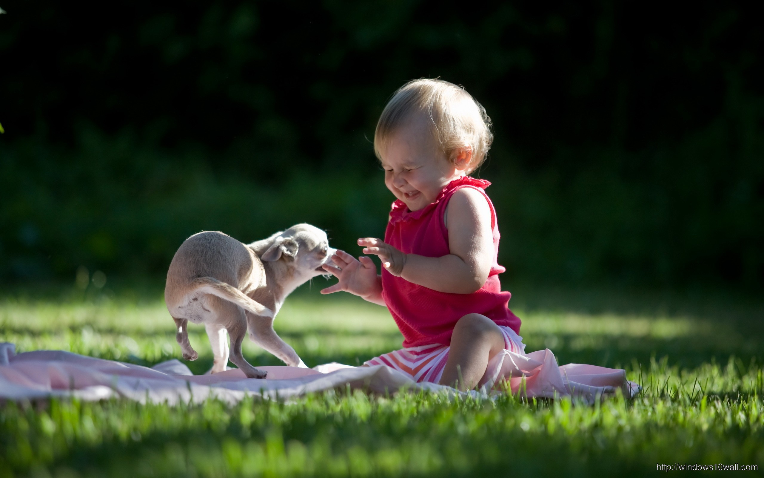 Baby Play With Dog Wallpaper