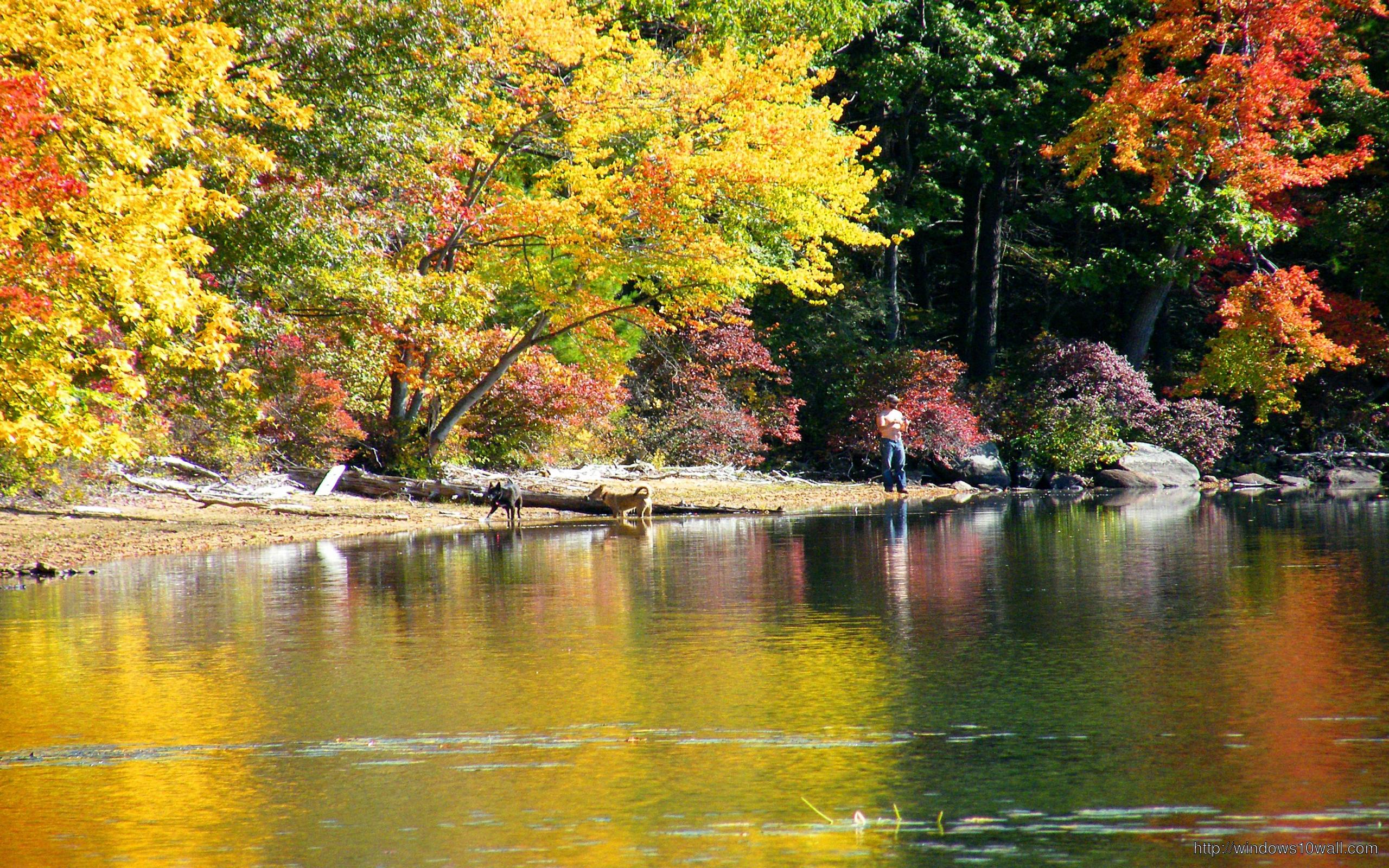Beautiful River Nature Wallpaper