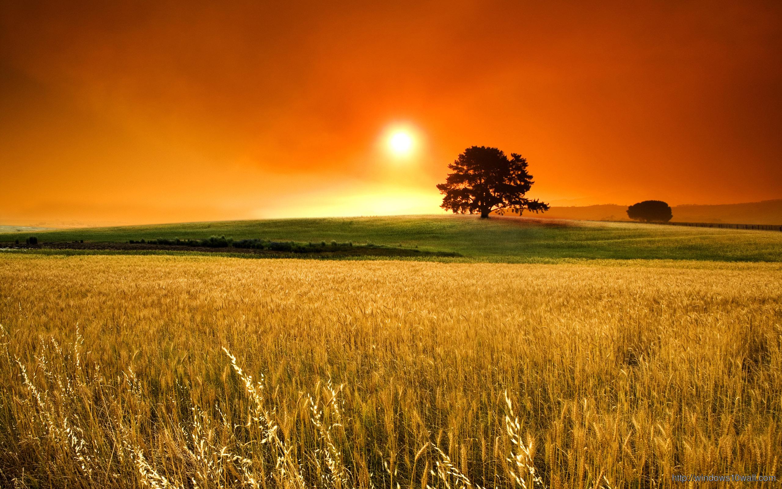 beautiful-scenery-sunset-wallpaper