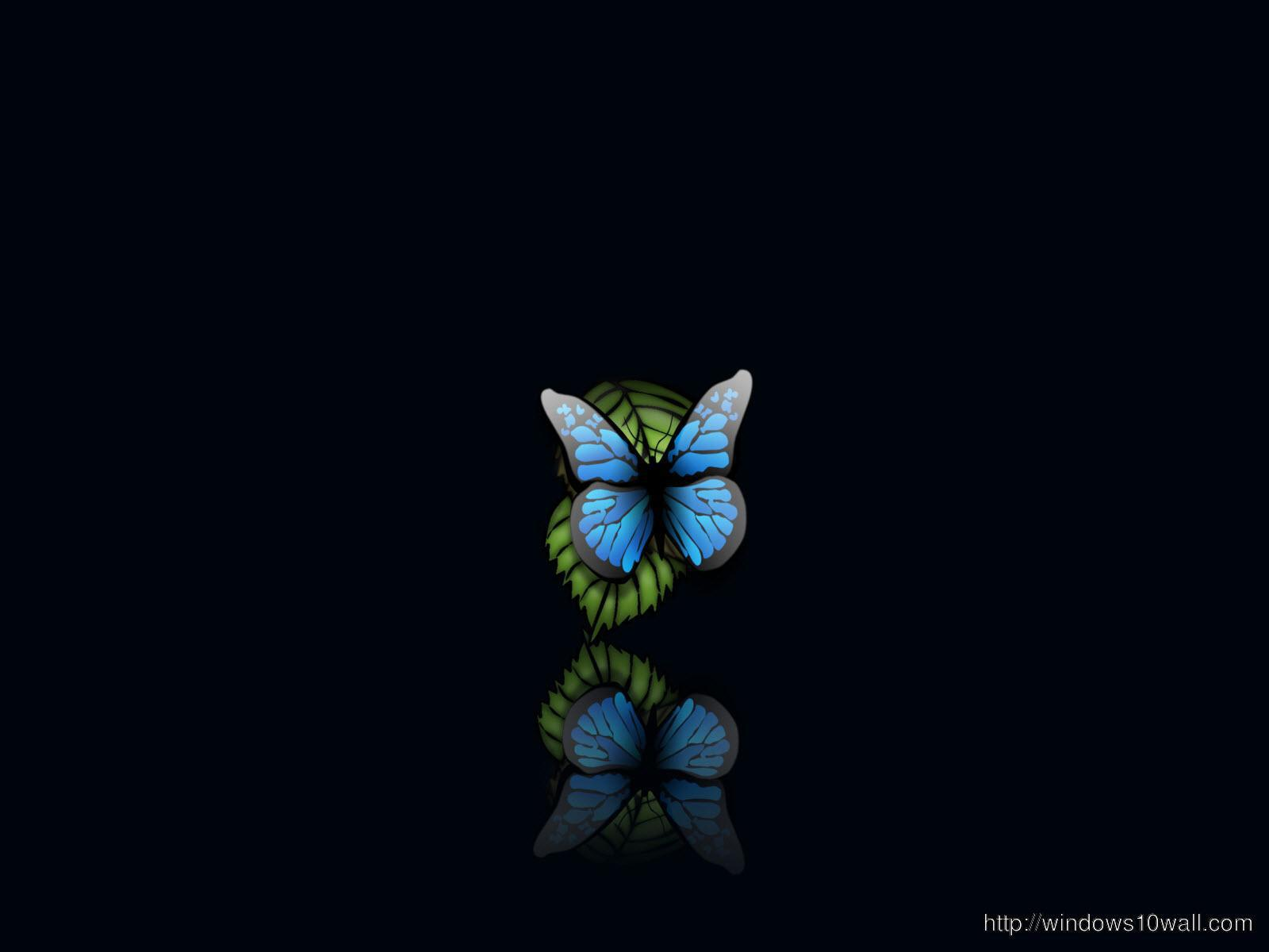 butterfly-computer-wallpaper-free