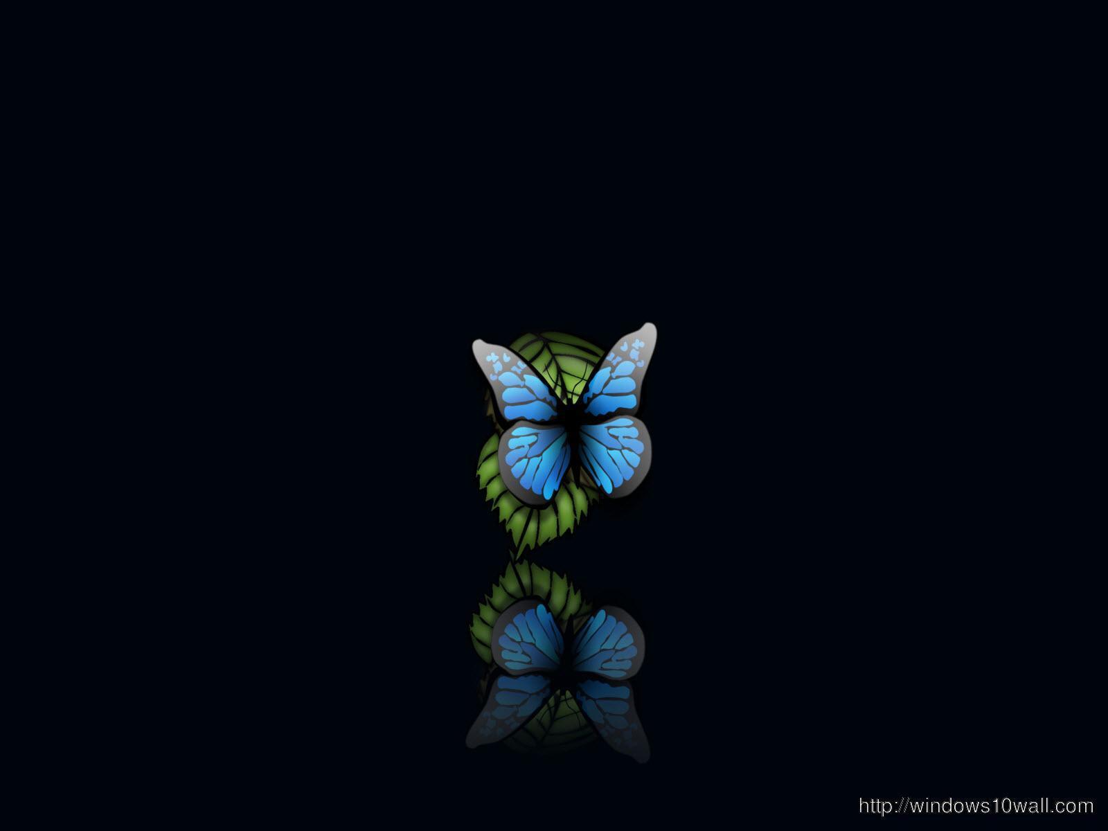 Butterfly Computer Wallpaper Free