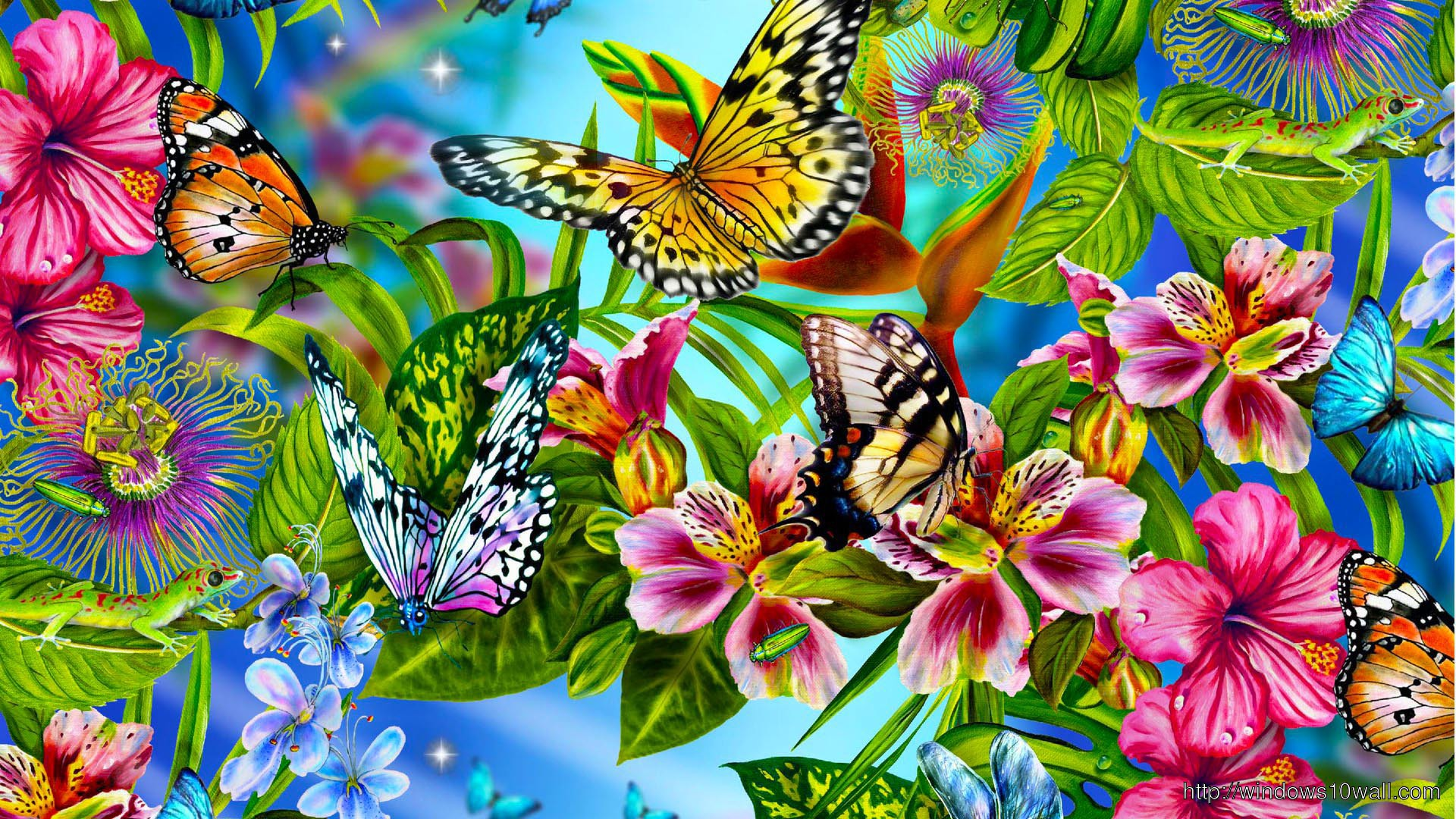 Butterfly Wallpaper To Download Windows 10 Wallpapers