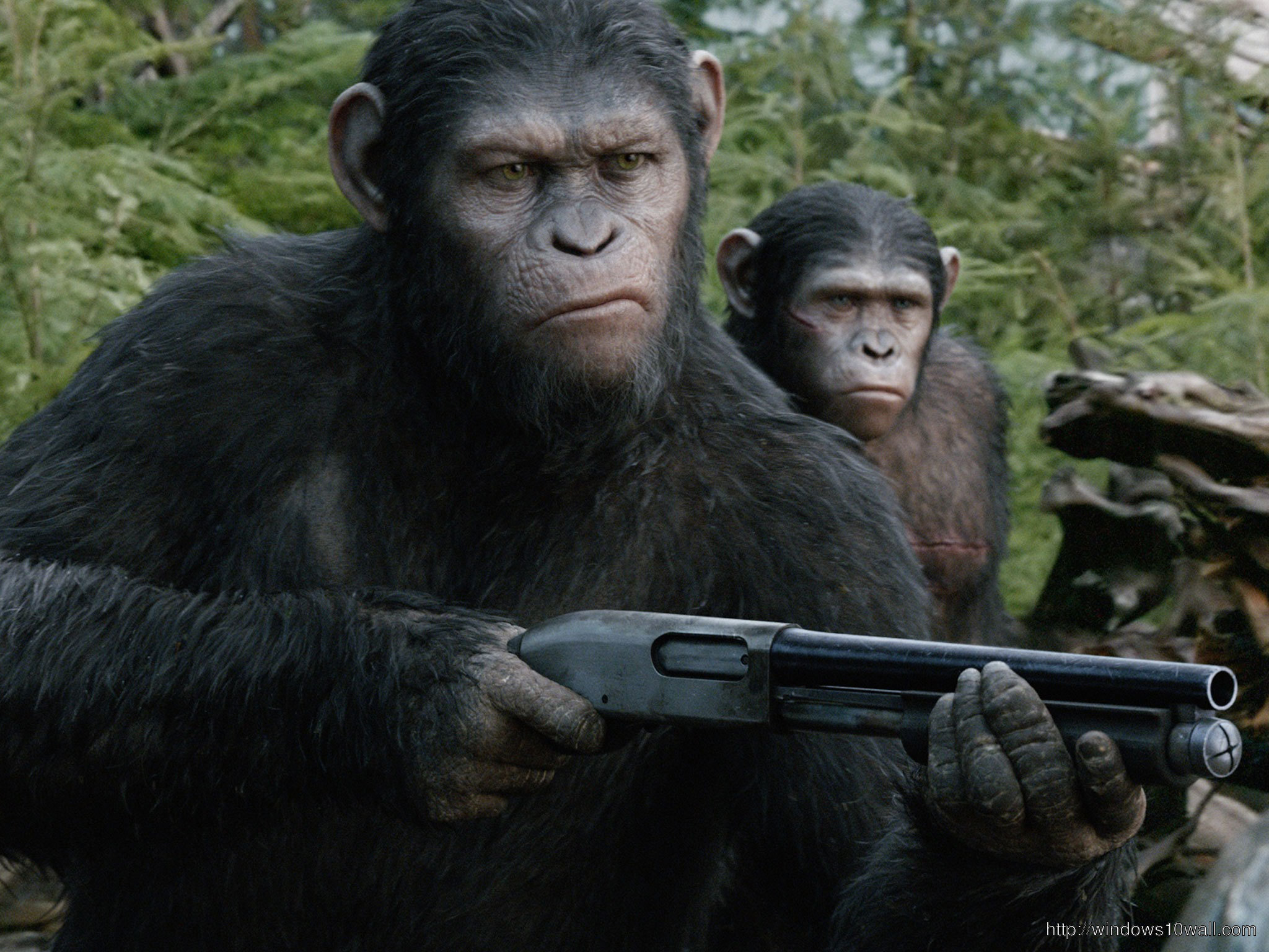 Dawn Of The Planet Of The Apes Releasing July 2014