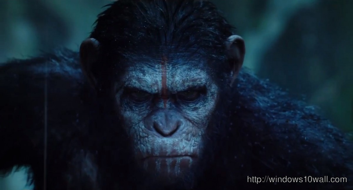 Dawn Of The Planet Of The Apes Wallpaper