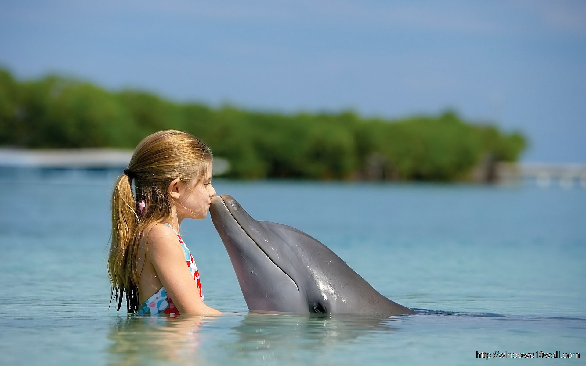dolphin-and-girl-wallpaper