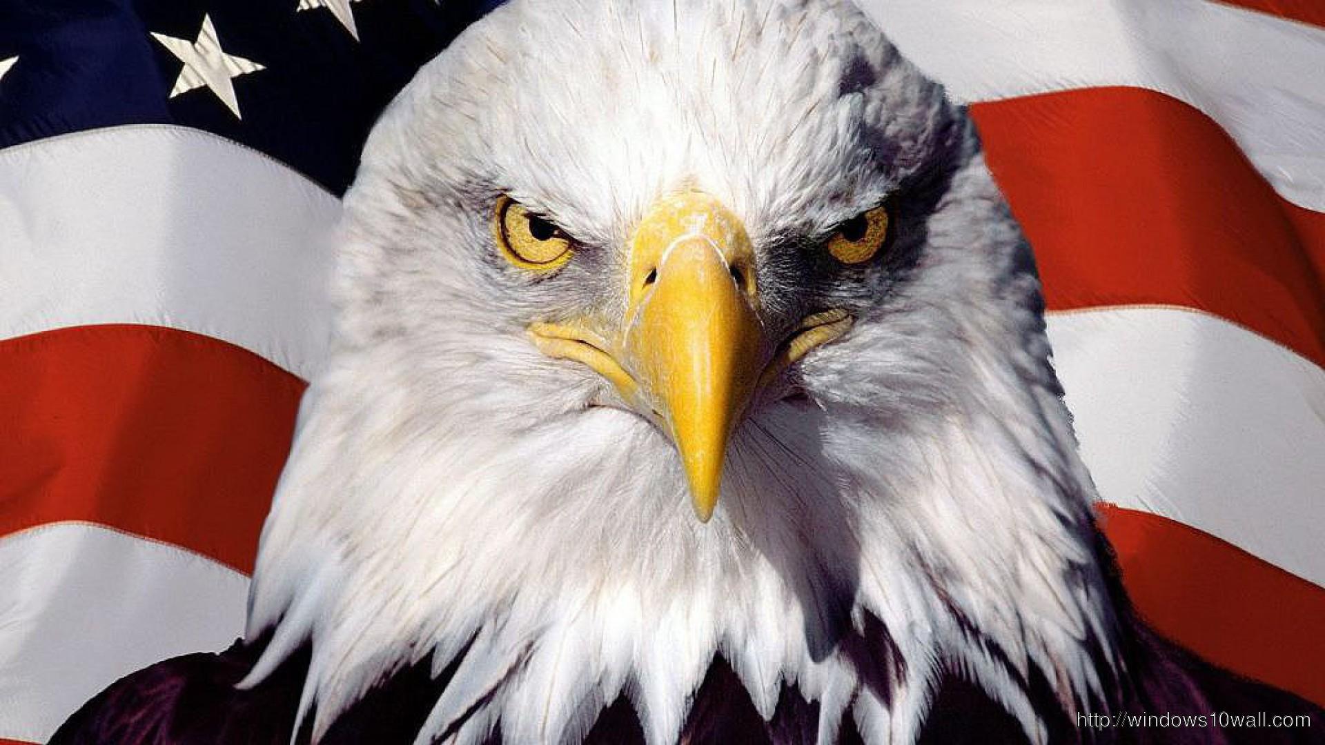 eagle-bird-on-flag-wallpaper
