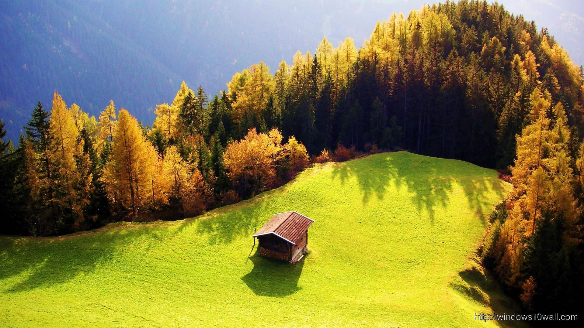 nature-green-beautiful-wallpaper