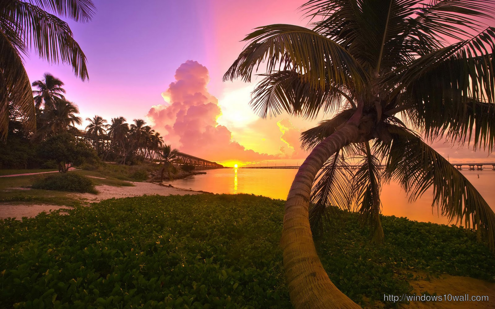 purple-beach-sunset-wallpaper-pink-sunset-with-palm-trees