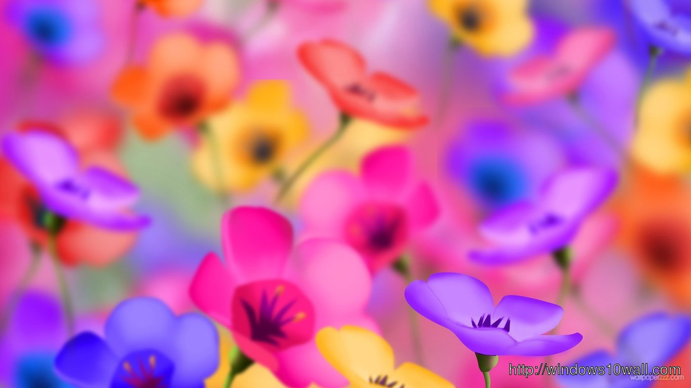 So Beautiful Colorful flowers Desktop Wallpaper