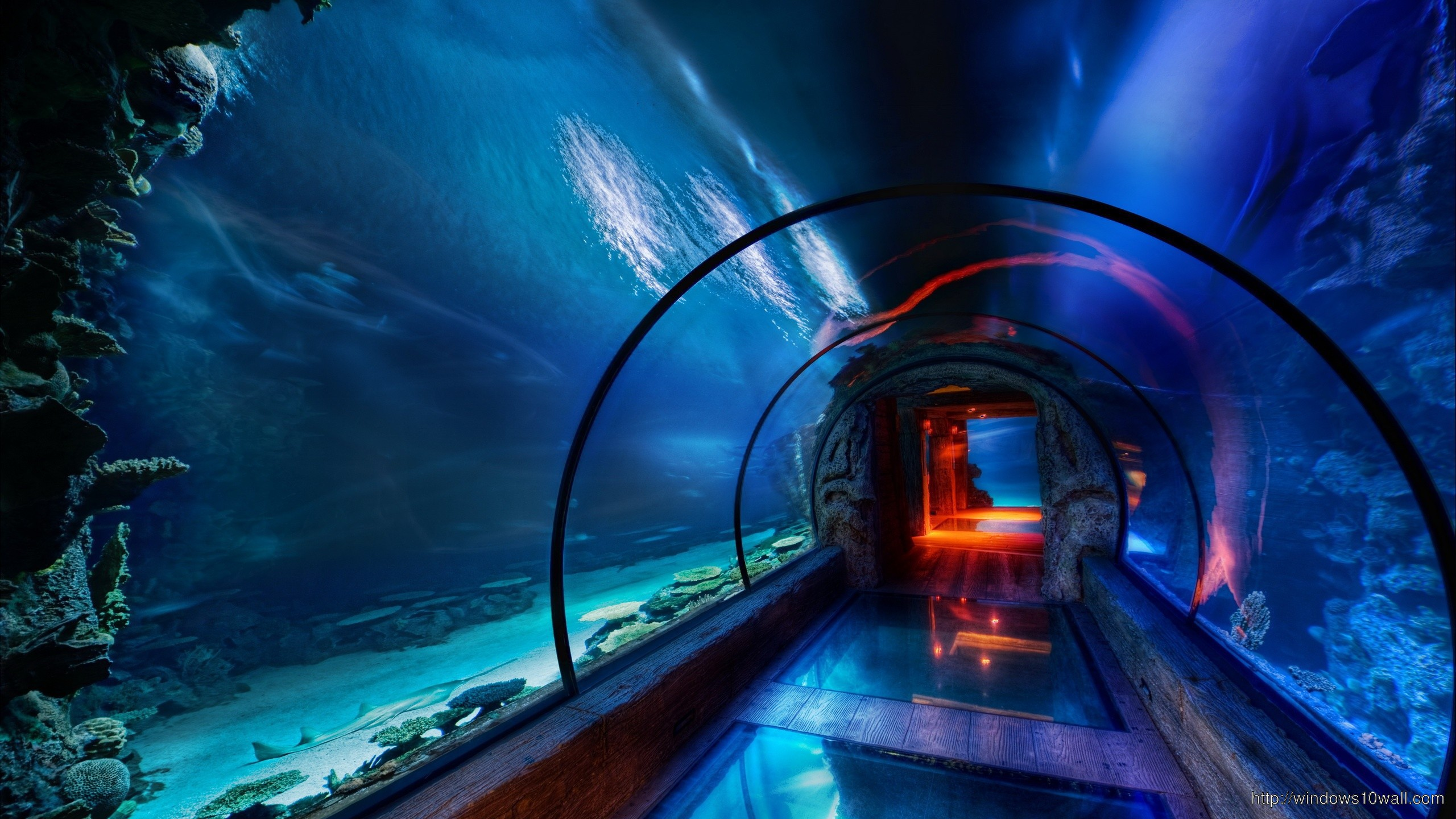 Underwater Tunnel1 Wallpaper Windows 10 Wallpapers