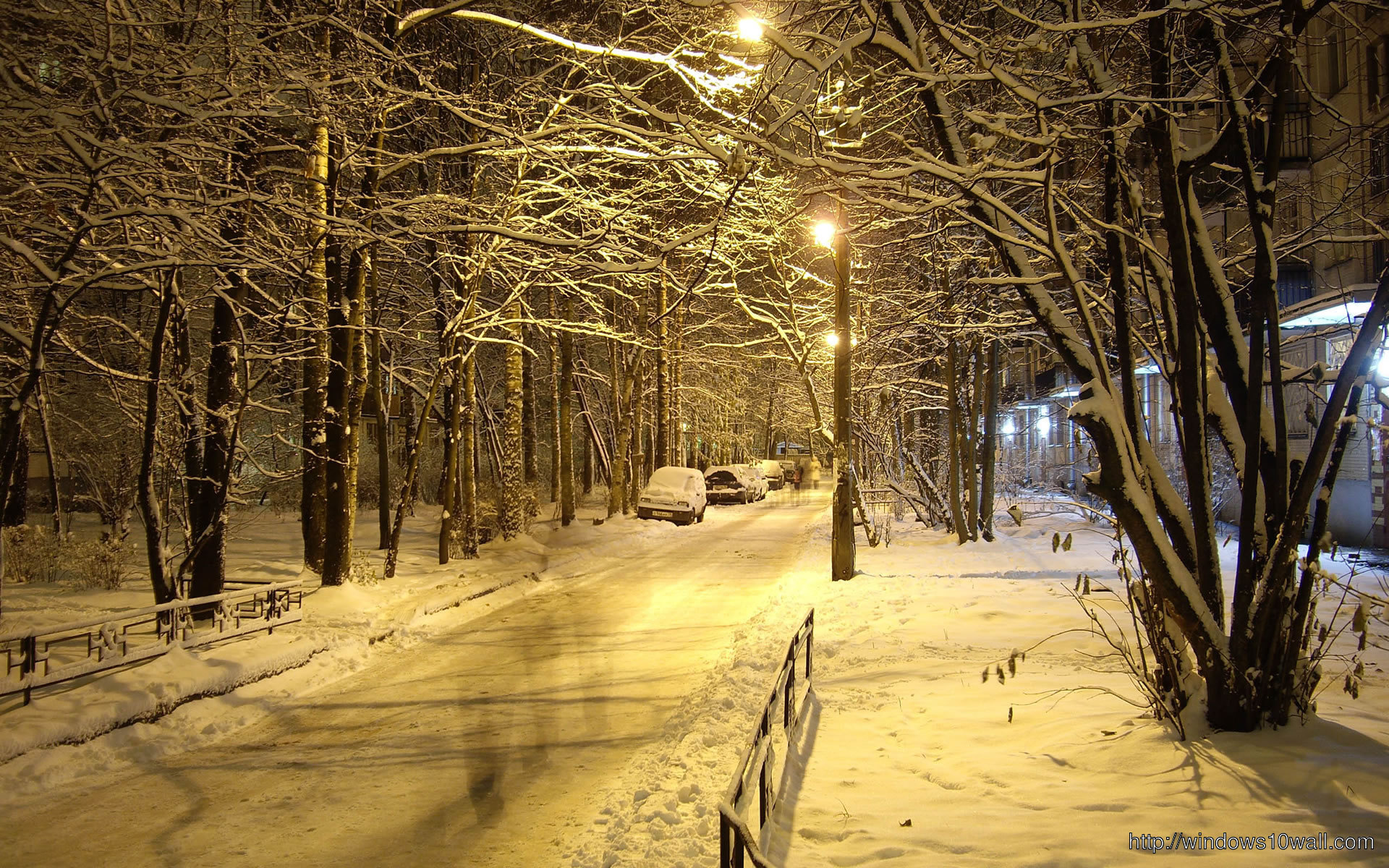 winter-at-night-wallpaper
