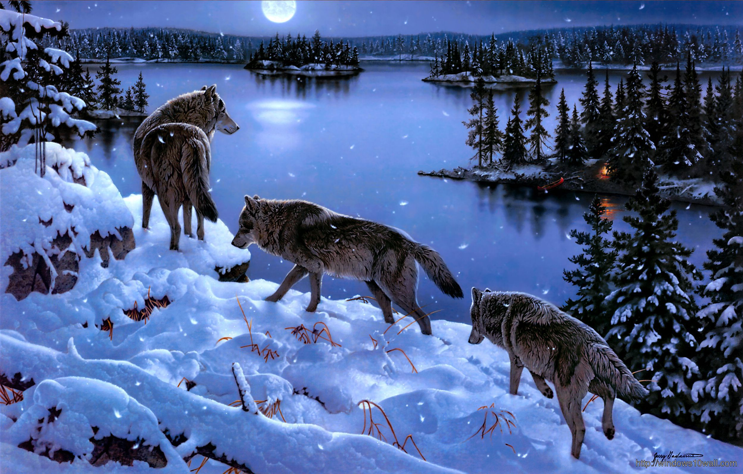 Wolf Winter Wallpaper on hello world baby