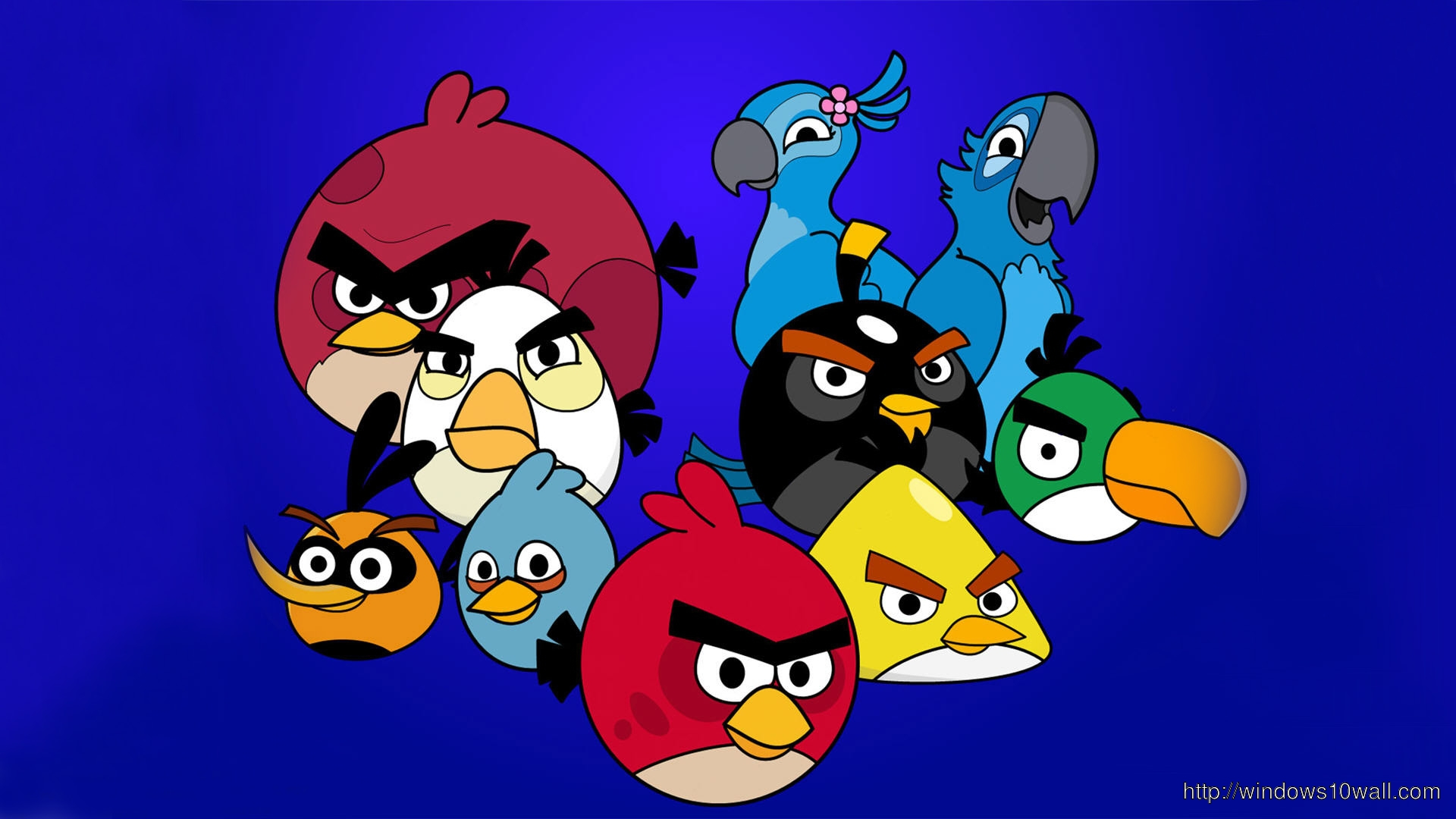 angry birds wallpaper 10 - photo #3