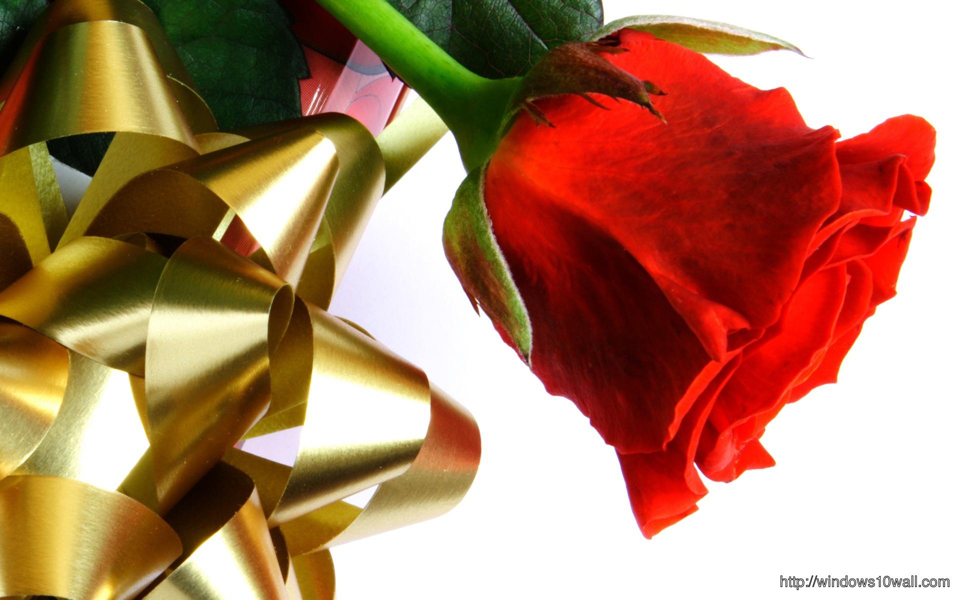 beautiful-red-love-rose-wallpaper