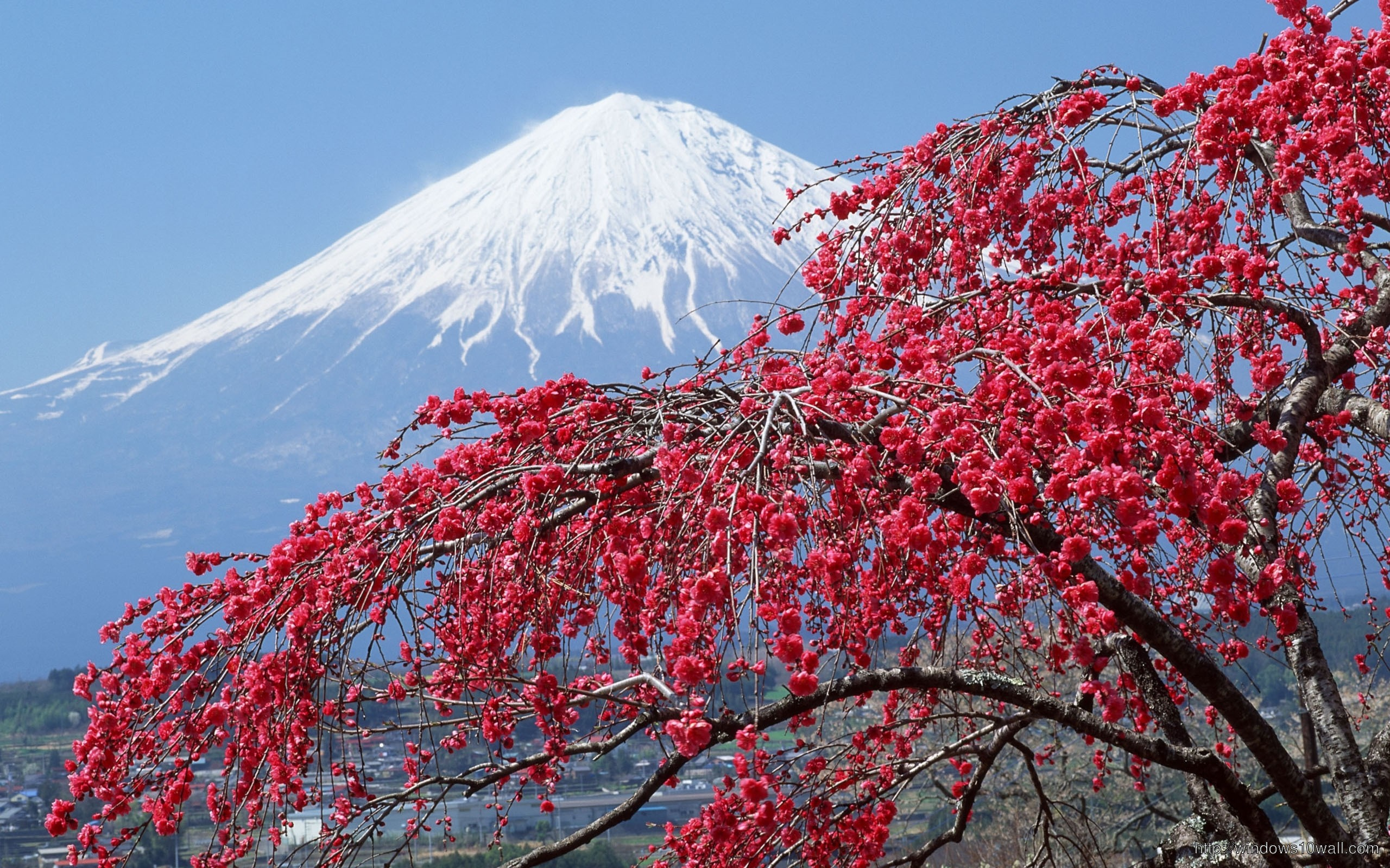 Fuji Mountain With Eyes On Top Wallpaper Windows 10