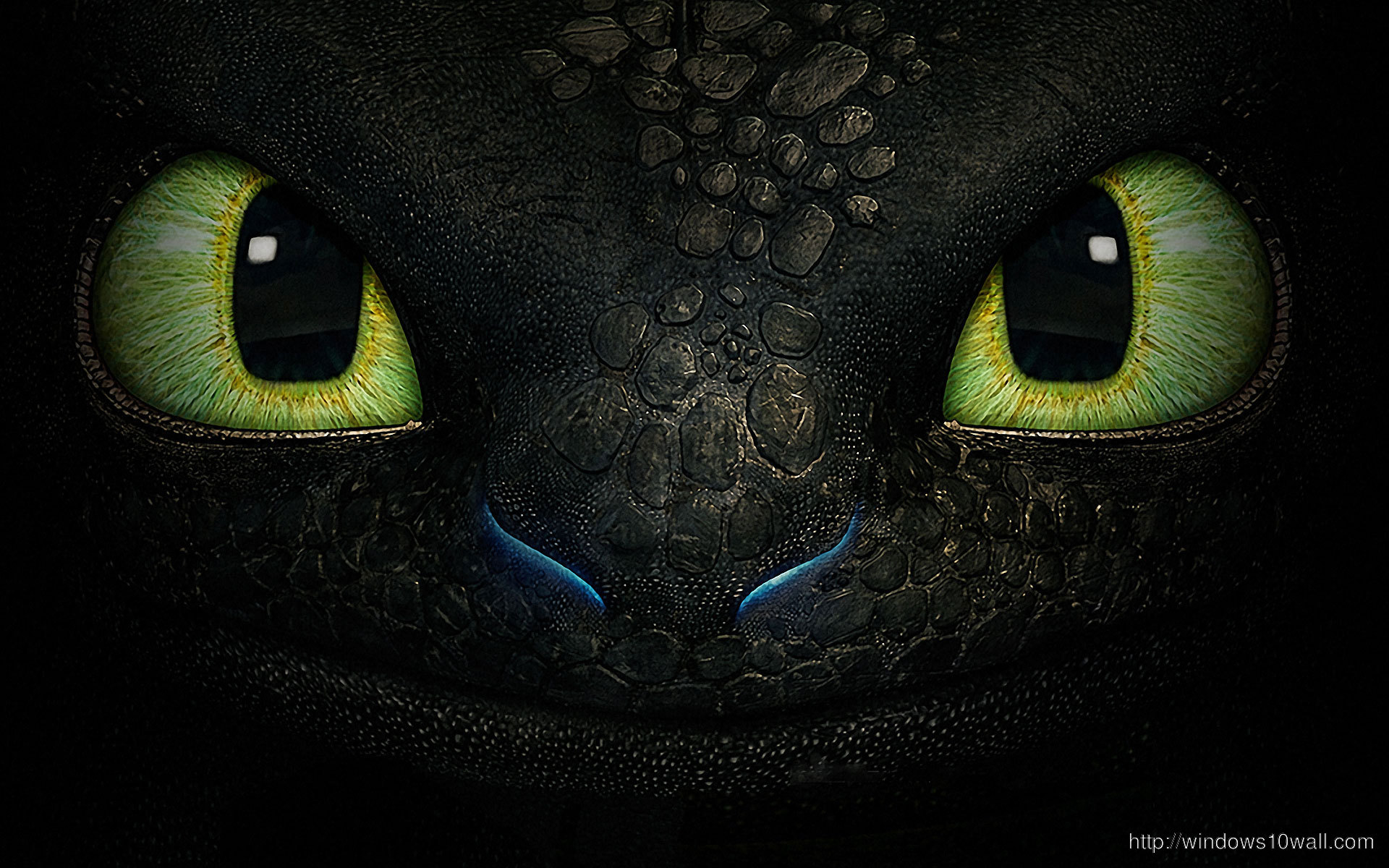 how-to-train-your-dragon-toothless-face-background-wallpaper