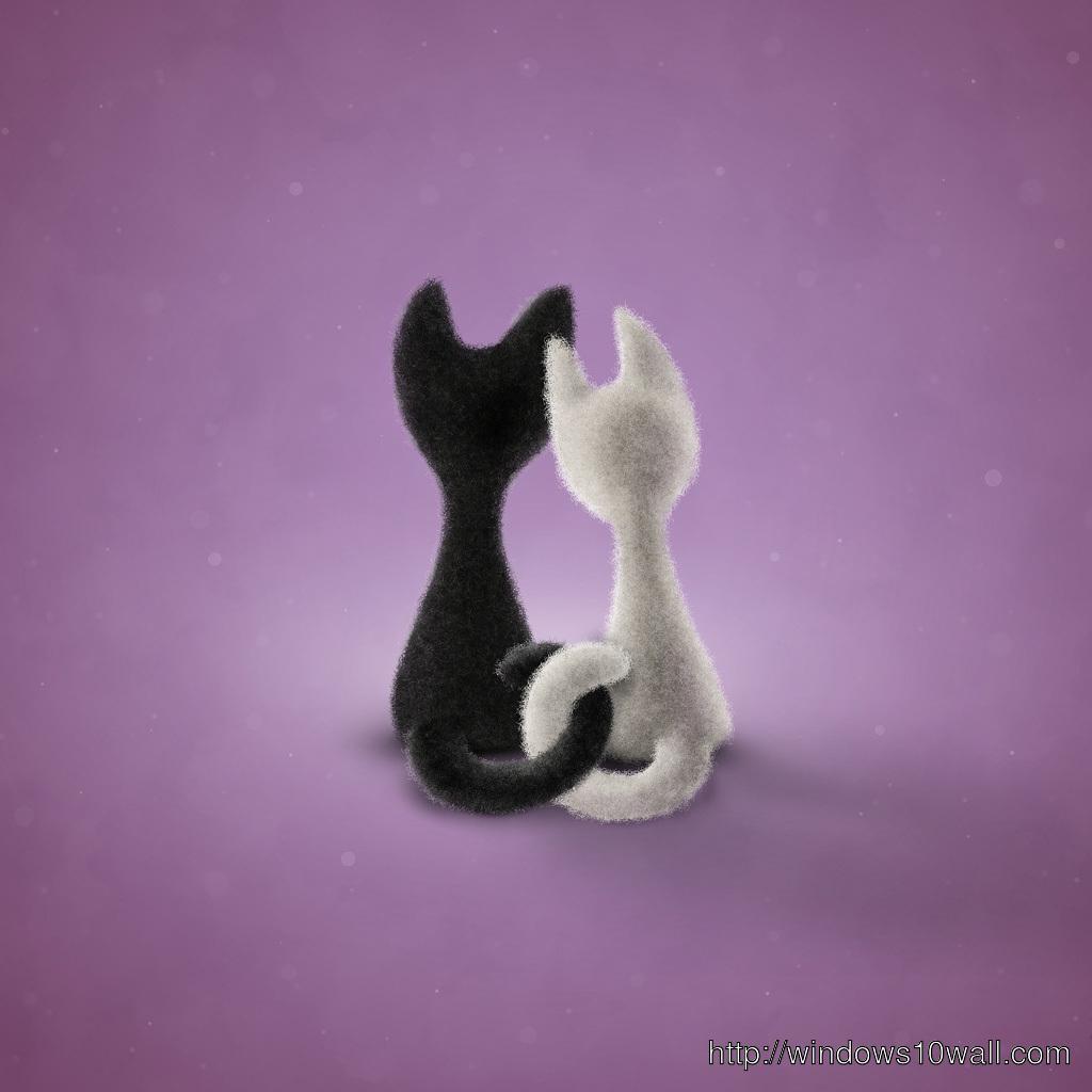 Black n white cats iPad Background Wallpaper