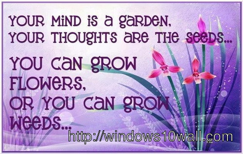 inspirational-quotes-for-student-like-garden-and-seeds-wallpaper